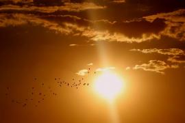 El año 2016 ha sido el más cálido de los últimos 137 años, según confirma la NOAA