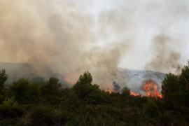 Estabilizado el incendio de Sant Elm