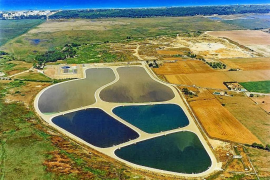 Santa Margalida estudia denunciar al Govern por arrojar agua mal depurada en Son Real