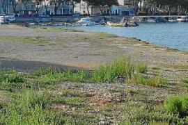 El Govern proyecta un varadero y un parking en Portocolom entre la división de los vecinos