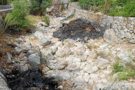 Nueva polémica por la siega y quema de cañas en el torrente de Fornalutx