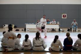 Judo en sa Pedrera (Fotos: Daniel Espinosa).
