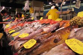 El sector pesquero balear aumentó capturas pero redujo ventas en 2010 por la crisis
