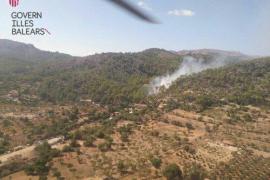 Controlado el incendio en el camí de Morella, Andratx