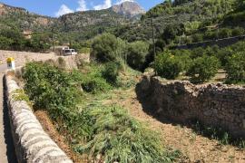 El Govern realiza la limpieza de los torrentes de Fornalutx y Sóller