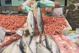 Los pescadores arrancan la campaña de 'llampuga' con buenas capturas