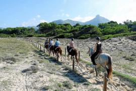 Govern y Consell valoran un nuevo trazado para las rutas a caballo en sa Canova de Artà