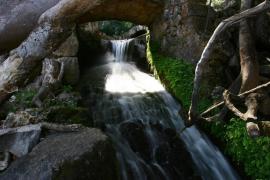 El Govern regulará el precio del agua para evitar cobros abusivos de las empresas privadas