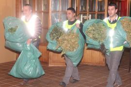 Más detenciones en la 'operación Dorado'