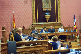 El Consell de Mallorca reafirma su intención de rescatar el túnel de Sóller