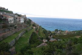 Banyalbufar aspira a convertirse en Maravilla Rural de España