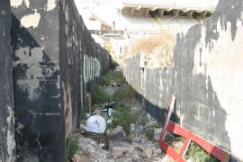 Cort realojará a una familia que vive ilegalmente en el Lluis Sitjar
