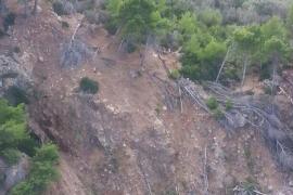 Rescatan a un hombre que se había precipitado por un barranco en Deià