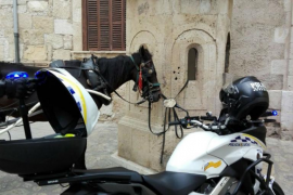 Denuncian al dueño de un caballo por atarlo a una garita del Palau de l'Almudaina