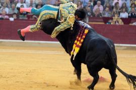 Cayetano Rivera, corneado en Zaragoza