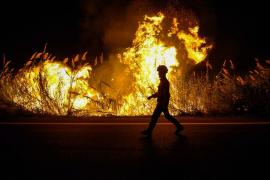 Al menos 31 personas han muerto en los incendios en Portugal