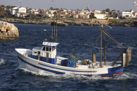 Un estudio destaca que la pesca de arrastre modifica las relaciones depredador-presa