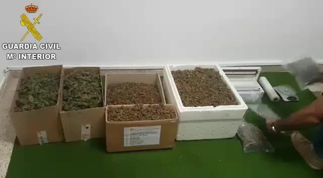 Prisión para un hombre por cultivar marihuana en Llucmajor y enviarla a Alemania