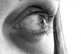 Ensayan un nuevo tratamiento contra la ceguera con reproducción in vitro de células de retina