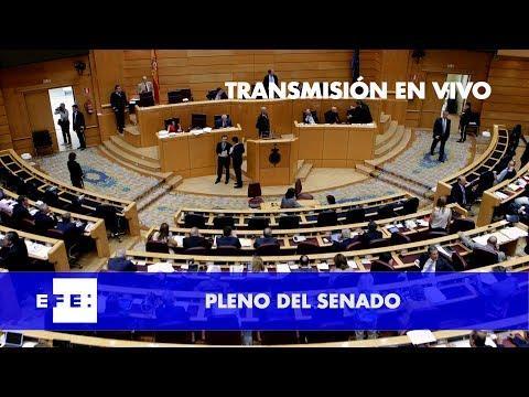 EN DIRECTO, Rajoy defiende en el Senado la aplicación del artículo 155