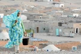 Los derechos humanos en el Sáhara centrarán el Club Última Hora el día 28