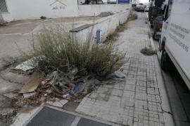 Cort invierte 9,8 millones en dos años para limpiar Palma