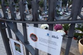 Sóller alerta de que los tiestos del cementerio favorecen la plaga de mosquitos