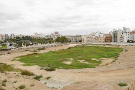 Principio de acuerdo entre el Ayuntamiento de Palma y el Real Mallorca para la venta del Sitjar