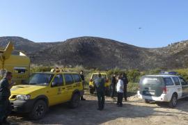 Controlado el incendio que ha quemado 75 hectáreas de carritx en Capdepera