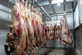 La OMS pide prohibir el uso de antibióticos que estimulan el crecimiento en animales
