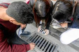 Alumnos del IES Santa Maria de Vila salen a la caza del mosquito tigre
