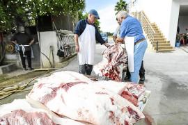 Los veterinarios quieren más controles sobre los alimentos