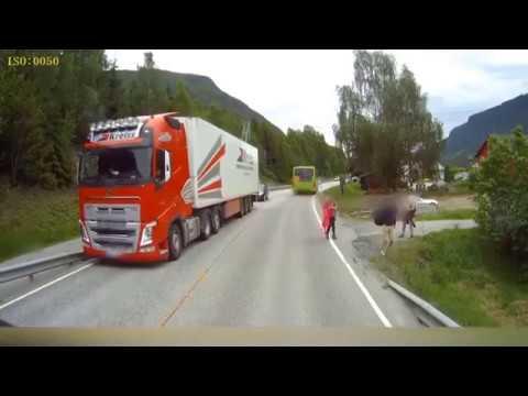 Un niño salva milagrosamente la vida en una carretera de Noruega