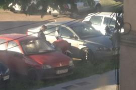 Taxistas de Palma realizan batidas a la 'caza' de los jóvenes que destrozan sus vehículos