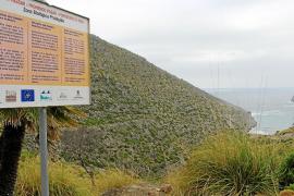 Un nuevo estudio ambiental abre la vía para recuperar el acceso público a Cala Castell