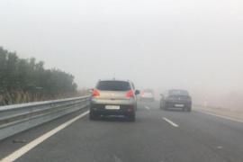 Espesos bancos de niebla en Palma