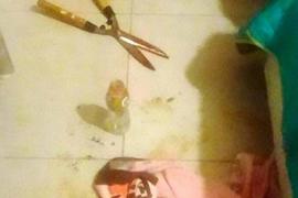 Pocas luces y muchas sombras en el caso de la mujer que cortó el pene y los testículos a su amante en Argentina