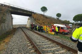 Descarrila el tren Málaga-Sevilla en Arahal, con 35 pasajeros heridos