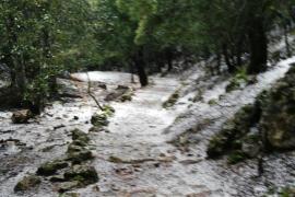 Caen los primeros copos en la Serra de Tramuntana
