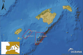 El Govern apuesta por la protección de las montañas submarinas del canal de Mallorca