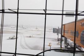 La compañía Niki 'deja tirados' a los pasajeros atrapados desde el domingo en Colonia
