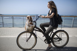 Las mascotas dejarán de ser bienes muebles, susceptibles de embargos o herencias