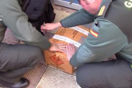 La Guardia Civil requisa unas 15.000 'bombetas' a la venta en casetas de Palma