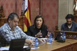 El pleno del Consell aprueba inicialmente el Plan de Equipamientos Comerciales de Mallorca