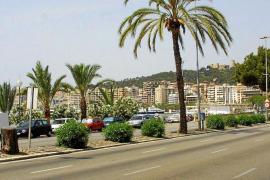 Un año para la transformación urbanística de Palma