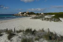 El Parc Natural des Trenc tendrá seis chiringuitos pero alejados de las dunas