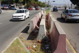 ARCA considera «muy necesario» ganar espacio para peatones en el Paseo Marítimo de Palma