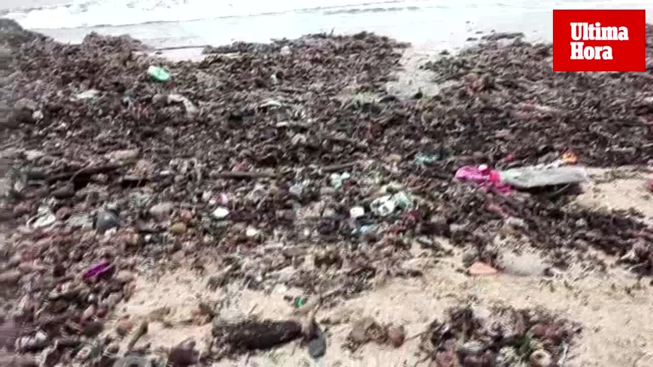 Denuncian una vez más la acumulación de basura en la playa de Can Pere Antoni