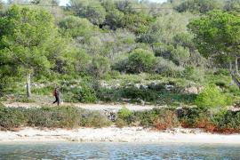 Un paseo peatonal unirá el núcleo de Portocolom con la playa del Arenal