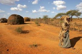 La sequía pone a miles de niñas en riesgo de explotación sexual y matrimonio infantil, alerta World Vision